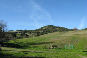 Marin open fields in Novato